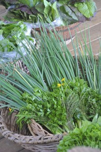 Fresh Garlic chives, spring onions and parsley